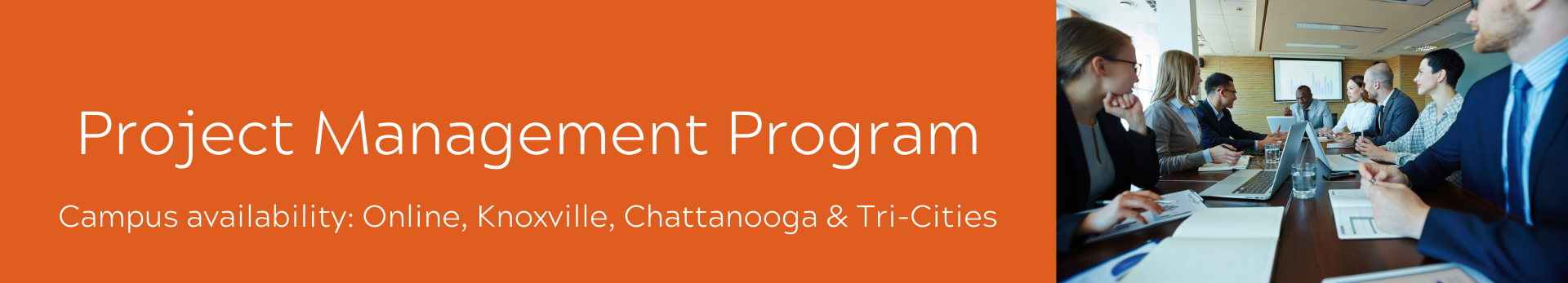 Project Management Program available Online